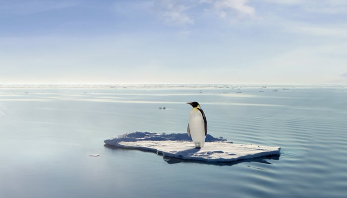 What are we doing about Global Warming?
